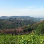 Pohled od Hostýna na trojvrší Javorčí, Poschlá a Barvínek