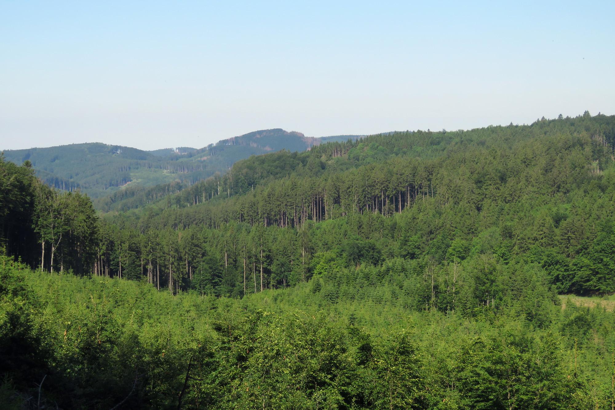 Výhled směrem k Rusavě z cesty pod Oklukem