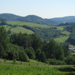 Louky nad Vlčkovou od rozcestí Na Písečném